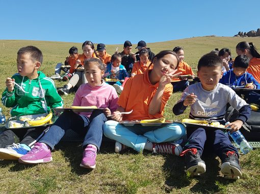 몽골 2017